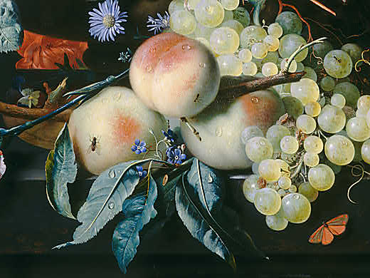 van-Huysum-Still-Life-with-Flowers-and-Fruit-Detail-Fruit