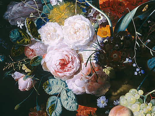 van-Huysum-Still-Life-with-Flowers-and-Fruit-Detail-Peonies
