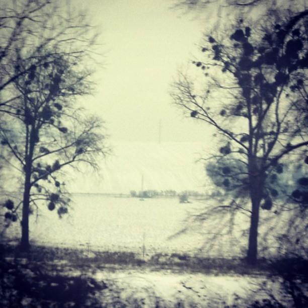 zima sním mráz jmelí pole stromy